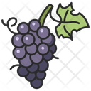 Fresh Grape Fruit Icon