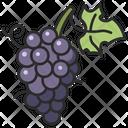 Fresh Grape Fruit Icon