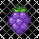 Grape Fruits Fruite Icon