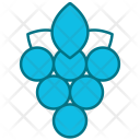 Berry Fruit Grape Icon