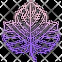 Grape Leaf Icon