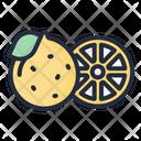 Grapefruit Fruit Food Icon