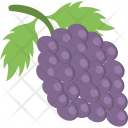Agriculture Grapes Bunch Icon