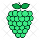 Grapes Raspberry Fruits Icon