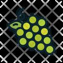 Fruit Vine Wine Icon