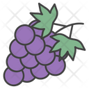 Grapes Fruity Berry Icon
