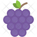 Grapes Bunch Fruit Icon