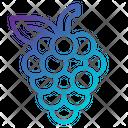 Fruit Grape Grape Fruit Icon