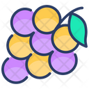 Agriculture Grapes Natural Icon