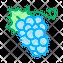 Berry Banana Pear Icon