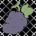 Grape Fruit Healthy Icon