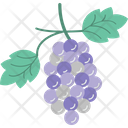 Grapes Bunch Of Grapes Fruit Icon