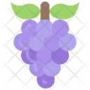 Grapes Food Eating Icon