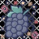 Grapes Genus Vitis Organic Icon