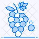 Grapes Fruit Nutritious Icon