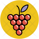 Grapes Bunch Of Icon