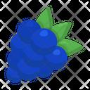 Grapes Organic Fruit Icon