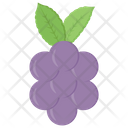 Grapes Fruit Natural Diet Icon