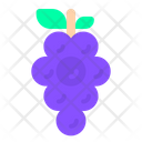Grapes Fruit Spring Icon
