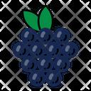 Fruit Simple Grape Icon