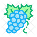 Bunch Grapes Sommelier Icon