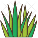 Grass Nature Icon
