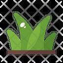 Grass Summer Nature Icon