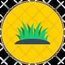 Grass Aloe Vera Meadow Icon