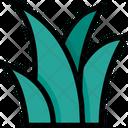 Grass Nature Plant Icon