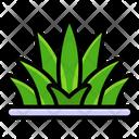 Grass Grassland Greenery Icon