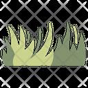 Grass Plant Lawn Icon