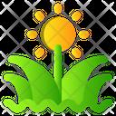 Grass Spring Flower Icon
