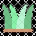 Grass Tree Nature Icon