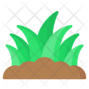 Grass Leaves Soil Icon