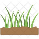 Green Grass Soil Icon