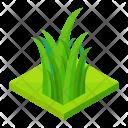 Grass Isometric Icon