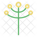 Grass Flower Bloom Botanic Icon