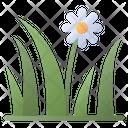 Grass Flower Icon