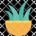 Grass Pot Plant Icon
