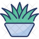 Grass Pot Houseplant Leaves Icon