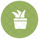 Growth Plant Nature Icon