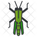 Grasshopper Animal Icon