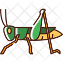 Grasshopper Insect Bug Icon