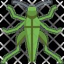 Grasshopper Seasons Bug Icon
