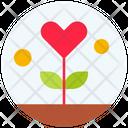 Gratitude Grow Growth Icon