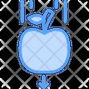 Gravity Icon