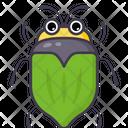 Green Beetle Icon