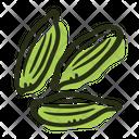 Cardamom Green Plant Icon