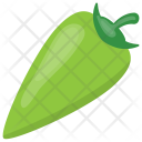 Green Chili Pepper Icon