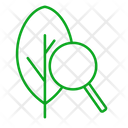 Green Energy Research Eco Icon